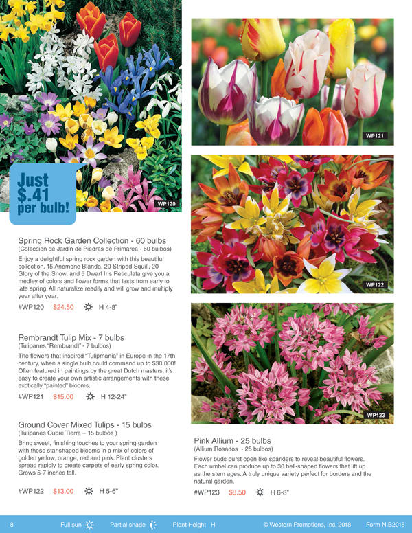 Bulbs for change flower bulb fundraising for spring and fall page from brochure mightylinksfo